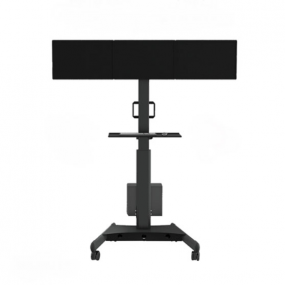 Dual screen mobile mount trolley tv stand for display